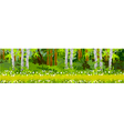 pathway in the forest panorama vector image vector image
