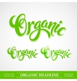 Title Organic Handmade lettering vector image vector image