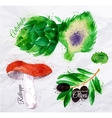Vegetables watercolor rotkappe artichokes black vector image vector image