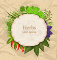 Vintage card with herbs and spices on crumpled vector image
