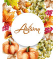 autumn fall vegetables watercolor pumpkin vector image vector image