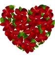 Heart made of hibiscus flowers vector image