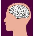 Male Brain vector image vector image