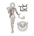 stylized zodiac sign taurus vector image vector image