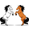 Prancing Stallion or Horse vector image