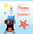 happy cat with summer glasses vector image vector image