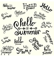 inscription hello summer handwritten lettering vector image vector image