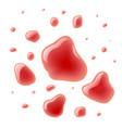 red wine splash bloody spots vector image vector image