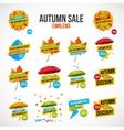 Autumn Sale Discount Logos or Emblems Set vector image vector image