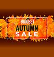 autumn sale poster banner design vector image
