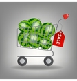 full supermarket shopping cart with wate vector image vector image