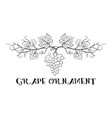 grapes floral ornament vector image