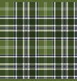green checkered plaid seamless fabric texture vector image vector image