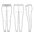 Leggings vector image vector image
