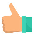 thumb up icon flat style vector image