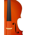 vertical banner with violin cello for music vector image