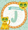 abc animals j is jaguar children english alphabet