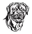 decorative portrait dog dogue de bordeaux vector image vector image