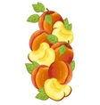 Peach isolated composition vector image vector image