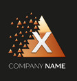 silver letter x logo symbol in the triangle shape vector image
