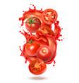 tomato juice splash composition vector image vector image