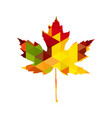 autumnal maple leaf triangle vector image vector image