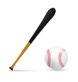 Bat and ball for baseball vector image vector image