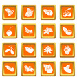 berries icons set orange square vector image vector image