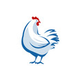 chicken logo farm animal symbol or label vector image vector image