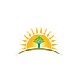 people tree life in sunshine logo family of vector image vector image