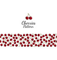 red cherry berries seamless pattern on white vector image