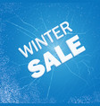 winter ice sale set snow cold sale banner vector image vector image