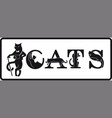 animal team letters-cats black and white vector image vector image