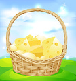 basket with cheese on green meadow vector image vector image
