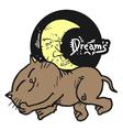 Cat dreams symbol vector image vector image