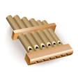 Classical bamboo Pan flute vector image