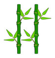 green bamboo stem icon cartoon vector image