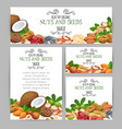 template with nuts and seeds vector image vector image