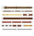 belts strap and buckles set fashionable leather vector image vector image