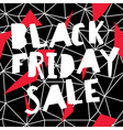 Big Sale Black Friday Sale Poster vector image vector image