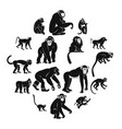monkey types icons set simple style vector image vector image