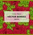 organic farm fruit square banner vector image