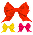 ribbon bow holiday gift set vector image
