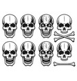 set different variants skulls elements vector image