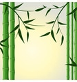 bamboo stalks background vector image vector image