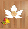 big autumn sale autumnal maple leaf triangle on a vector image vector image