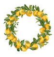 citrus orange tree ornament wreath with fruits vector image vector image