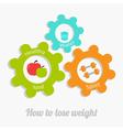 Colorful cogwheel gear set water apple dumbbel vector image vector image