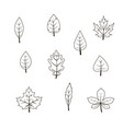 autumn leaf icon set vector image vector image