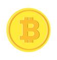 bitcon golden coin vector image